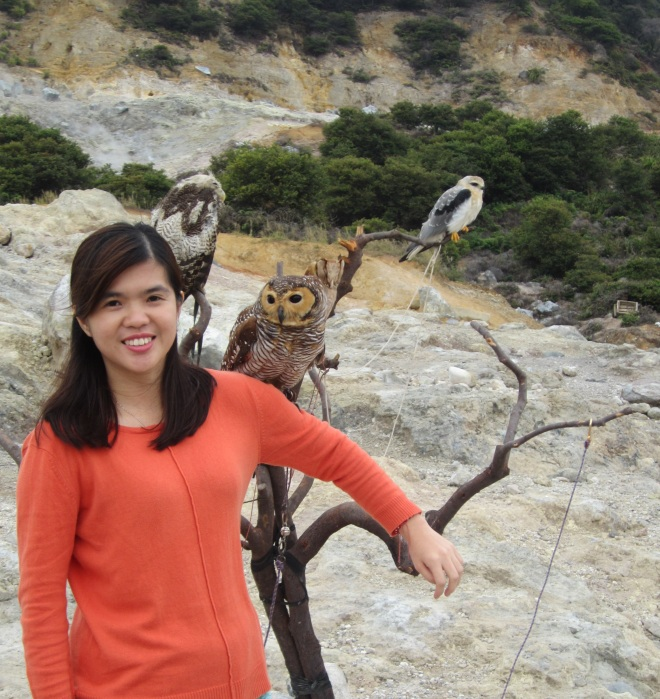 Only 5K IDR you can take pictures with owls as many as poses you want.