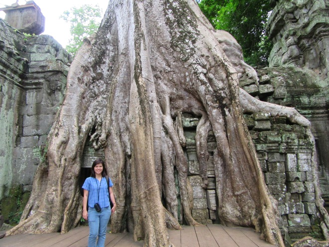 stellycious-cambodia-15