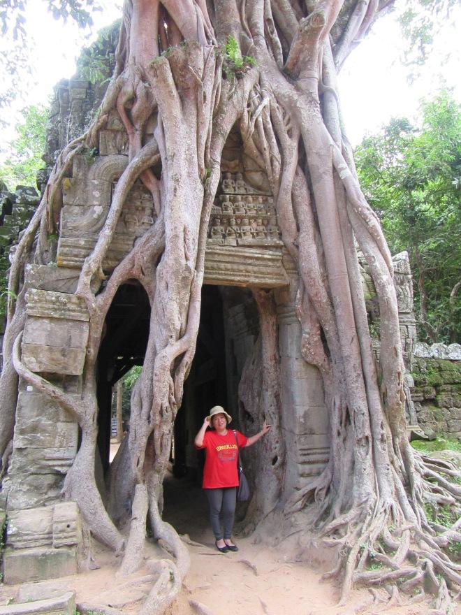 stellycious-cambodia-21
